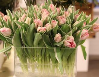 Eine rechteckige Vase aus Klarglas, gefüllt mit wunderschönen Tulpen: So sehen Frühlingsträume aus! Bild © Marc Müller