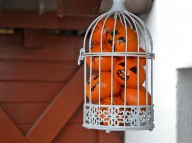 Clementinen im Käfig
