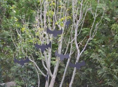 Fledermäuse am Baum