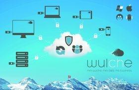 Bild-wulche-topsoft-wildcard-V2